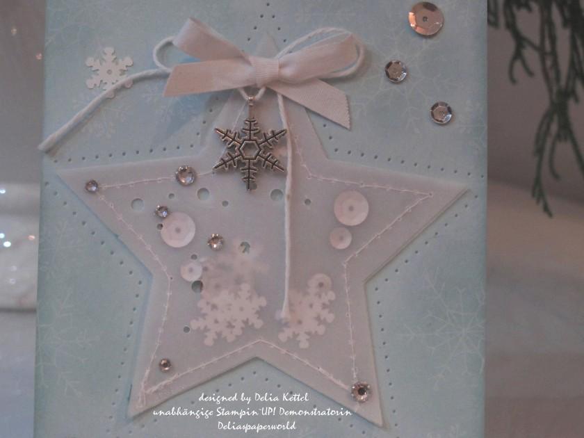 Vellum-Stern Weihnachtskarte 3