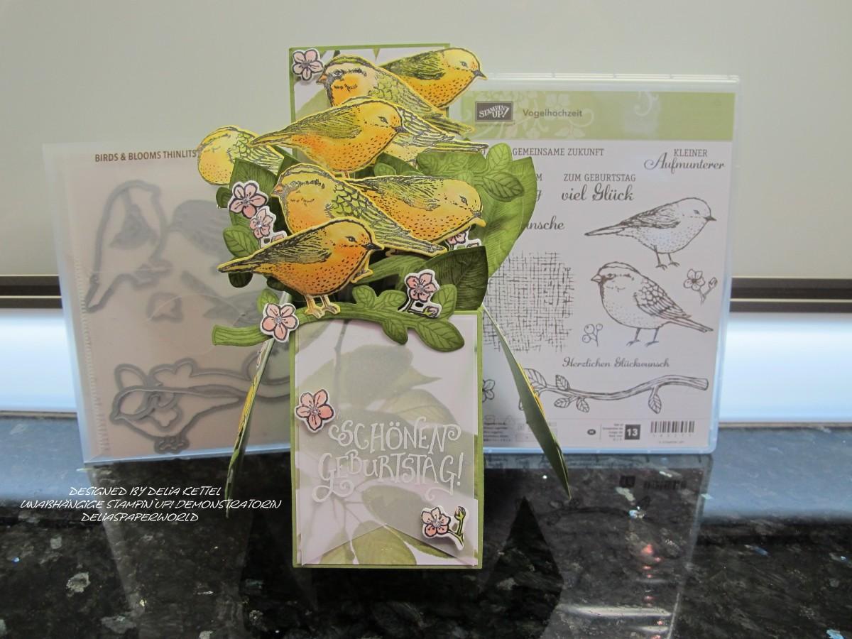 """""""Vogelhochzeit"""" in der Box mit Stampin `UP!"""